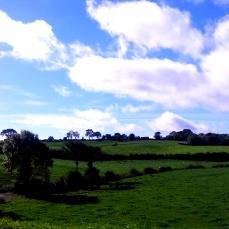 The beautiful Northern Irish countryside