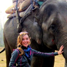 Elephant safari in Chitwan, Nepal